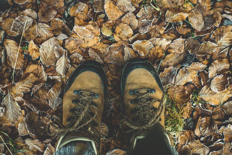 Zoom sur les chaussures de randonnées en forêt